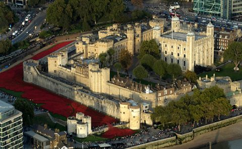 Poppies_in_the_Moat_(Tower_of_London_2014)_(1)_copy